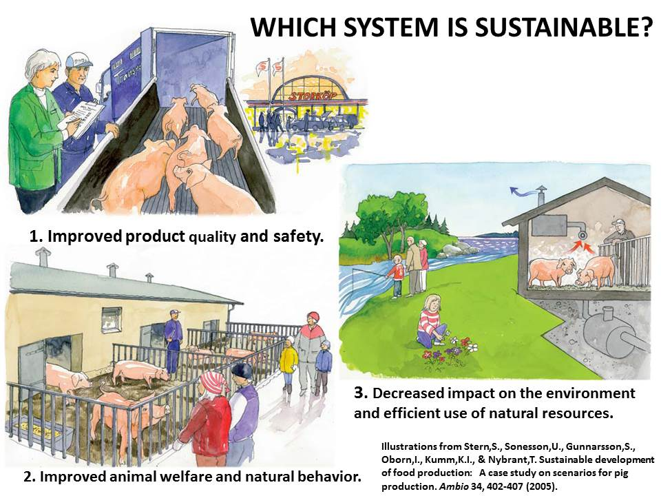 Which system is sustainable (1)?